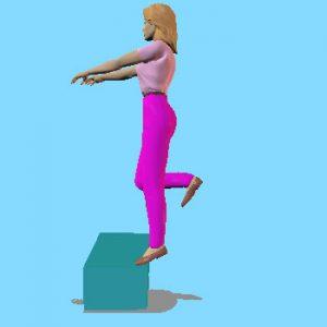 Renforcement excentrique du Triceps Sural